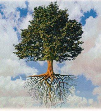 tree_mod