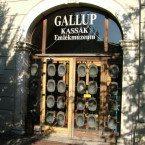 gallup_bejarat